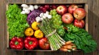 Plant-Based Diet: The First Path to Alleviating Suffering.