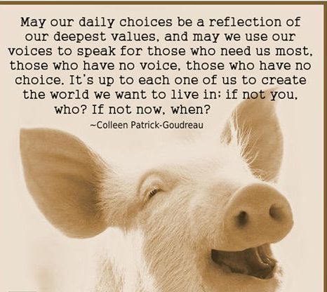 Choosing Compassion 3 Times A Day
